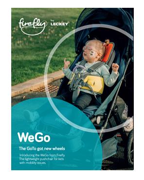WeGo Flyer