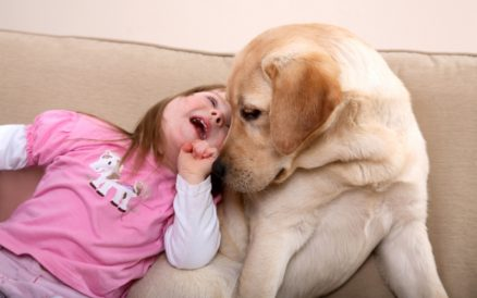 Pet Therapy as an Alternative Therapy