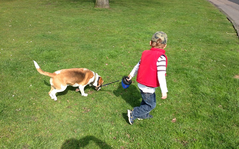 Three Ways Having a Dog Really Worked for our Autistic Son