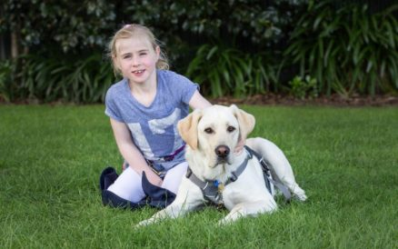 The Decision to Get an Assistance Dog was a Big One